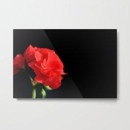 Red on black Metal Print