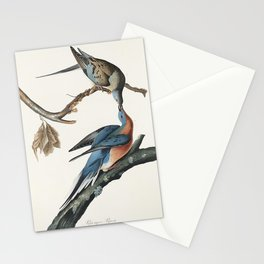 Passenger Pigeon from Birds of America (1827) by John James Audubon etched by William Home Lizars Stationery Cards