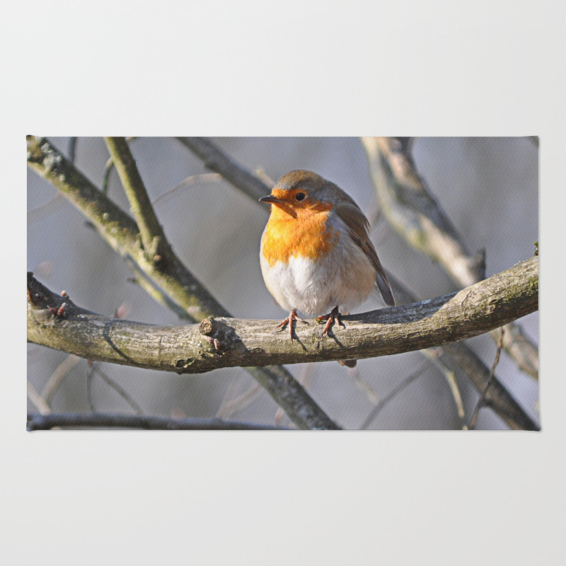 Robin Redbreast Throw Rug by Pirminnohr (RUG915575) photo