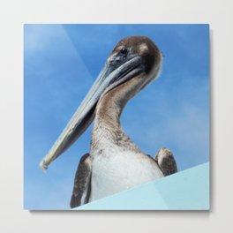 The Tilted Pelican Metal Print
