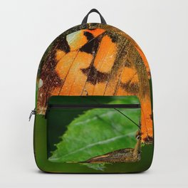 Butterfly Insect Backpack