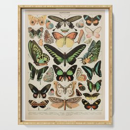 Papillon II Vintage French Butterfly Chart by Adolphe Millot Serving Tray