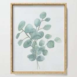 Eucalyptus Silver Dollar Serving Tray