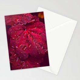 Pink Leaf Pattern Stationery Cards