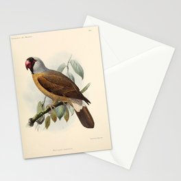perroquet mascarin Stationery Cards