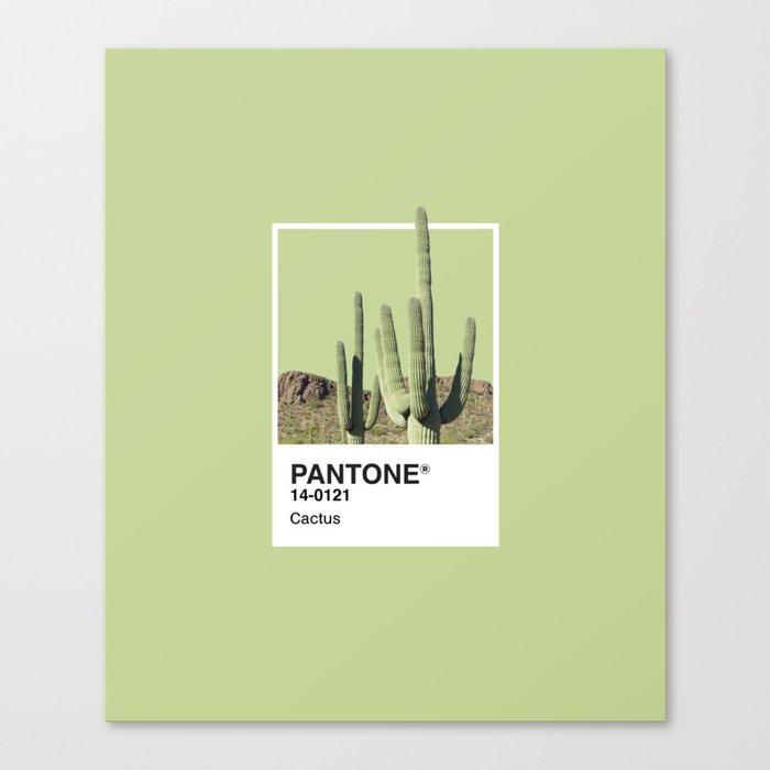 Pantone Series – Cactus Leinwanddruck