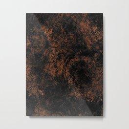 element of earth Metal Print