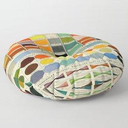 Color Systems Larousse Pour Tous French Encyclopedia Lithograph Illustration Vintage Scientific Art Floor Pillow