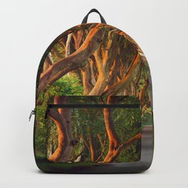 The Dark Hedges - County Antrim - Northern Ireland Backpack
