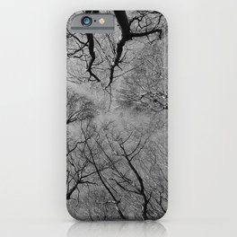 forest canopy iPhone Case