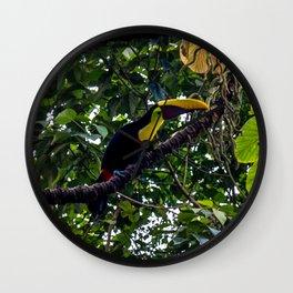 Costa Rican Toucan Wall Clock
