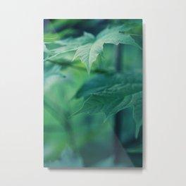 grassland - six Metal Print