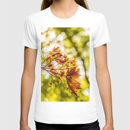 Maple blooms T-shirt