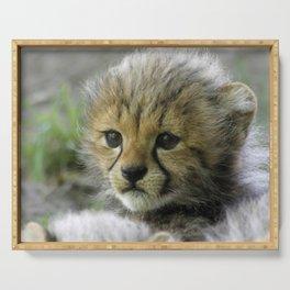Cheetah_20150908_by_JAMFoto Serving Tray