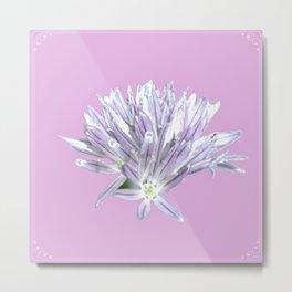 Pink Chive Floral | Nadia Bonello Metal Print