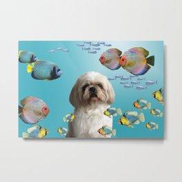Paul Top Model Shih tzu Dog - tropical Fishes Metal Print