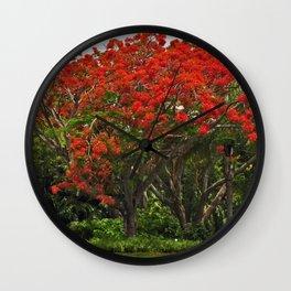 Royal Poinciana Tree Wall Clock