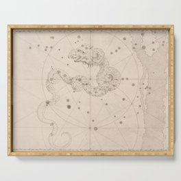 Johann Bayer - Uranometria / Measuring the Heavens (1661) - 03 Draco / Dragon Serving Tray