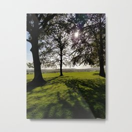 Shadow and Light Metal Print