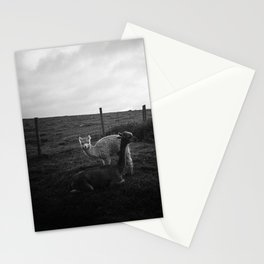 Alpaca/llama paddock Stationery Cards