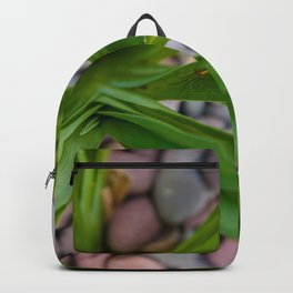 Insy Winsy Spider Backpack