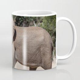 Elephant Seal In Search Of Water Coffee Mug