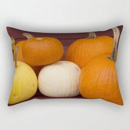 Freshly picked assortment of fall pumpkins, gourds, Autumn Decorations Rectangular Pillow