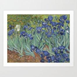 Van Gogh's Irises (High Resolution) Art Print