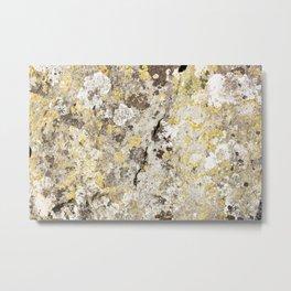 Lichen on The Rollright Stones Metal Print