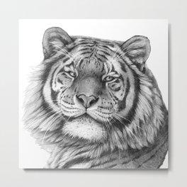 Siberian Tiger G101 Metal Print