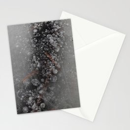 Frozen Motion Stationery Cards