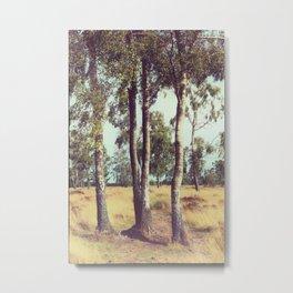 Vintage Nature Metal Print