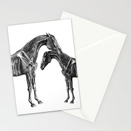 Horsy Horsy Stationery Cards