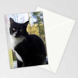 Tuxedo stare Stationery Cards