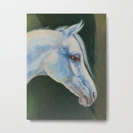 White Arabian Horse portrait Arab horse painting Metal Print