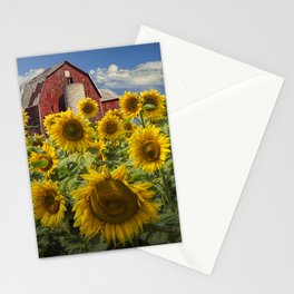 Golden Blooming Sunflowers with Red Barn Stationery Cards