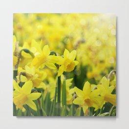 Bright Yellow Narcissus Metal Print