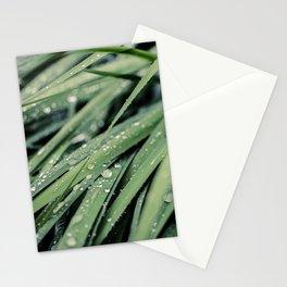 Rainy Grass Stationery Cards