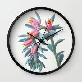 Succulent Cluster Wall Clock