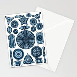 Ernst Haeckel Diatomea Diatoms in Navy Blue Stationery Cards