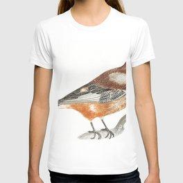 Flying Wigeon by Johan Teyler (1648-1709) T-shirt