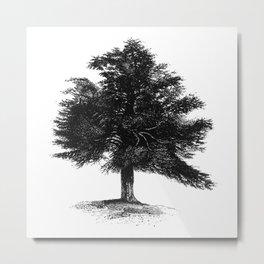 OAK TREE #society6 Metal Print
