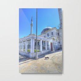 Istanbul Mosque Cat Metal Print