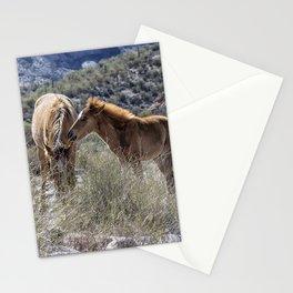 Salt River Mare and Her Colt, No. 1 Stationery Cards