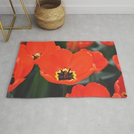 Red tulips Rug