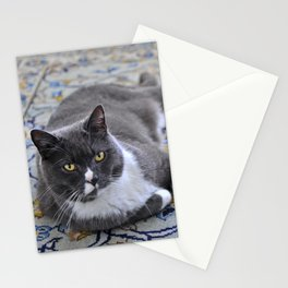 Living Room Cat Stationery Cards