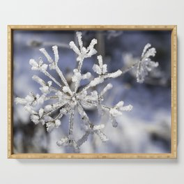 Winter snowflake plant Serving Tray