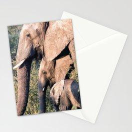 Elephant Family Stationery Cards