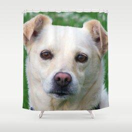 Blond dog portrait Shower Curtain