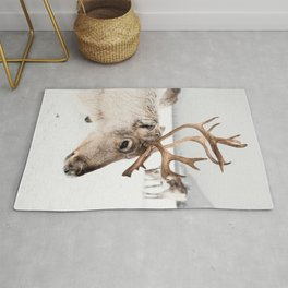 Reindeer with Antlers In Snow | Norway Tromsø Winter Art Print | Arctic Animal Travel Photography Rug
